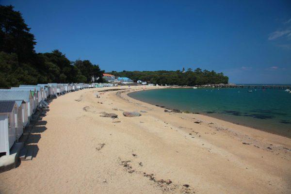 les plages et forêts de Vendée autour du camping